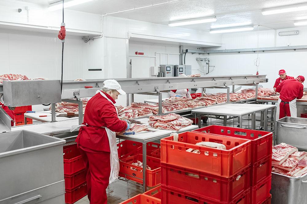самом деле ооо мясная гатчинская компания фото что нам